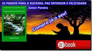 25 PASSOS PARA O SUCESSO, PAZ INTERIOR E FELICIDADE (PRO)