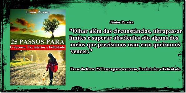 25 passos para o sucesso paz interior e felicidade. Júnior Pereira
