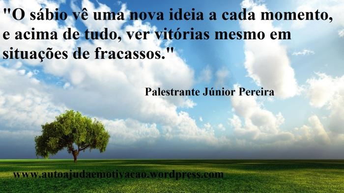 Como se comportar diante da crise que está acontecendo Por Palestrante Júnior Pereira, Auto ajuda e Motivação.