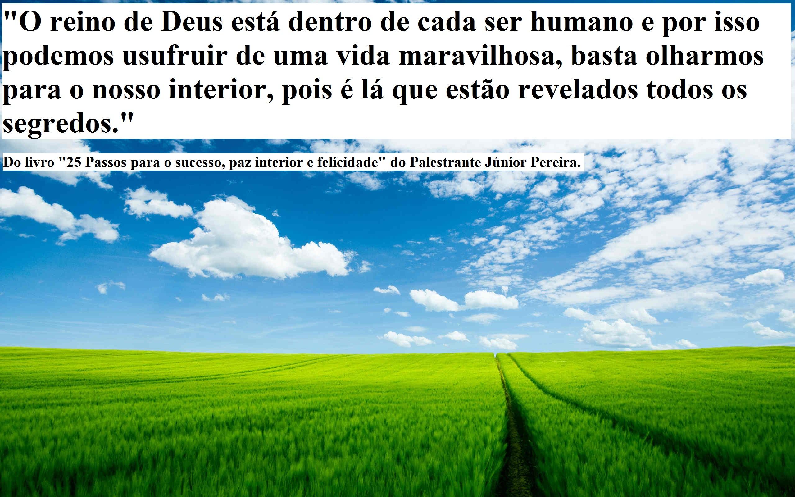 Crises Existenciais Como Vencê Las José Pereira Jr Auto Ajuda E